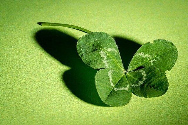čtyřlístek na zeleném pozadí