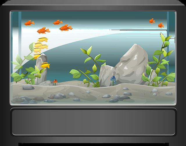 akvárium ilustrace