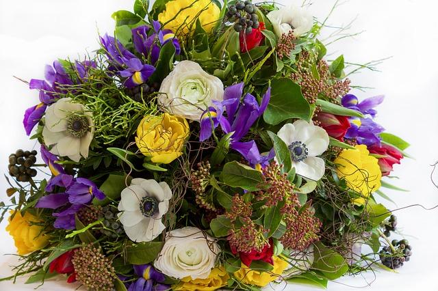 luční kytky